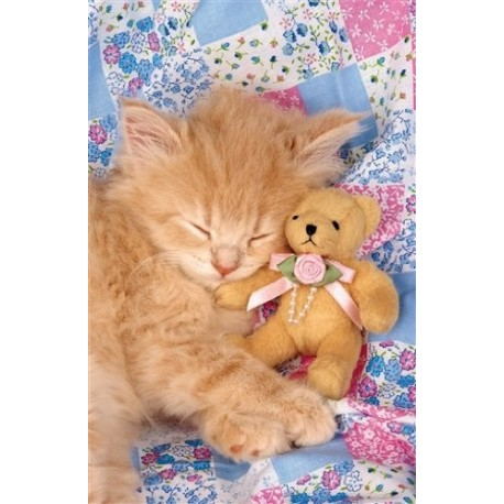 Puzzle Kitty & The Bear - 1000 piezas Clementoni 39072