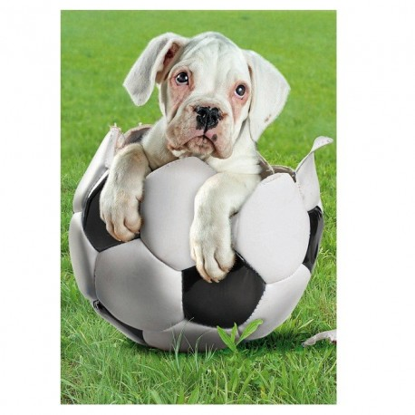 Puzzle Football Player - 500 piezas Clementoni 30281