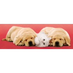 Puzzle A little Sleep - 500 piezas Clementoni 30394