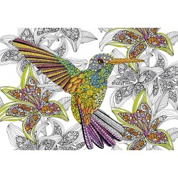300 HUMMING BIRD COLOURING PUZZLE
