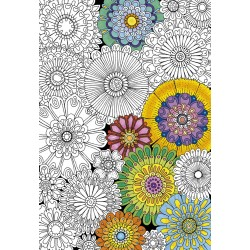 300 BIG BEAUTIFUL BLOSSONS. Colouring Puzzle.