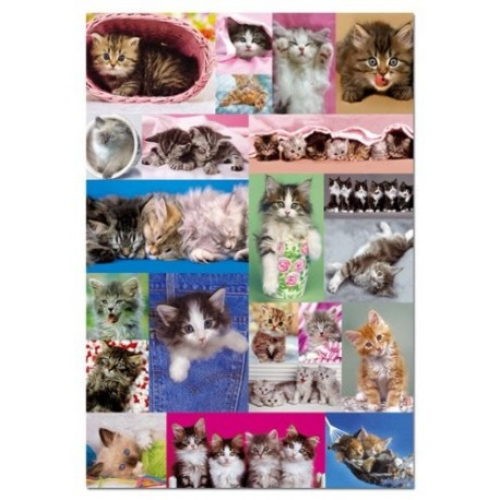 Puzzle Collage gatitos - 1000 piezas Educa 14442